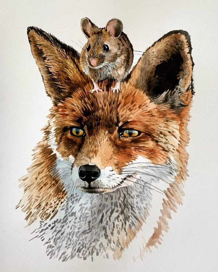 09-The-red-fox-and-mouse-Anna-www-designstack-co