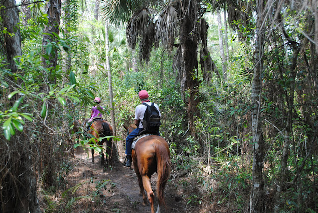 five star stables trail ride