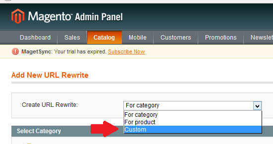 Choose 'Custom' under 'Create URL Rewrite' drop down menu.