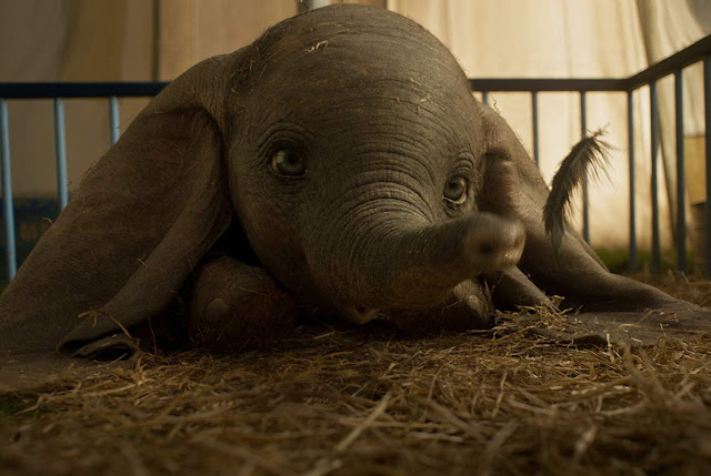 "Cinépolis anuncia pré-venda de ""Dumbo"""