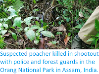 https://sciencythoughts.blogspot.com/2019/09/suspected-poacher-killed-in-shootout.html