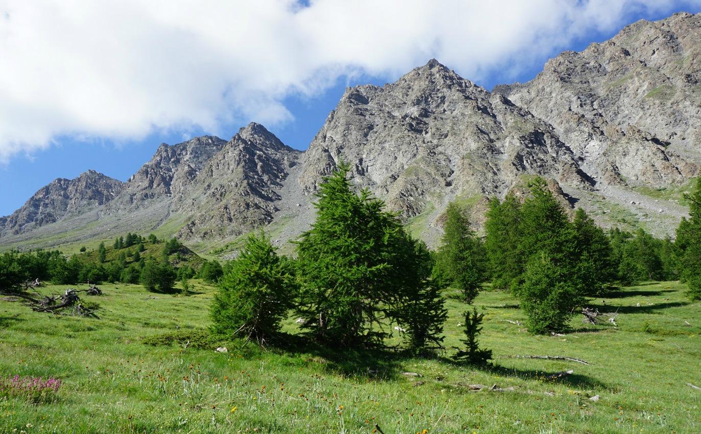 Château Renard massif seen from trail