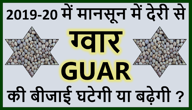 मानसून में देरी से ग्वार की बीजाई घटेगी या बढ़ेगी ? ?, Guar, guar gum, guar price, guar gum price, guar demand, guar gum demand, guar seed production, guar seed stock, guar seed consumption, guar gum cultivation, guar gum cultivation in india, Guar gum farming, guar gum export from india , guar seed export, guar gum export, guar gum farming, guar gum cultivation consultancy, today guar price, today guar gum price, ग्वार, ग्वार गम, ग्वार मांग, ग्वार गम निर्यात 2018-2019, ग्वार गम निर्यात -2019, ग्वार उत्पादन, ग्वार कीमत, ग्वार गम मांग, Guar Gum, Guar seed, guar , guar gum, guar gum export from india, guar gum export to USA, guar demand USA, guar future price, guar future demand, guar production 2019, guar gum demand 2019
