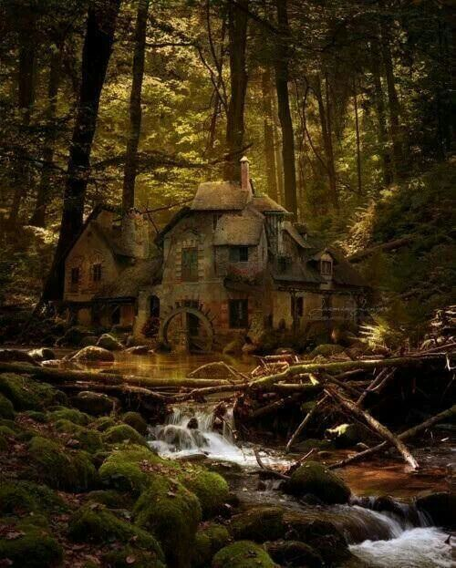 Old mill, Black Forest, Germany.