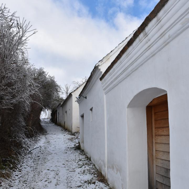 einzeiligeg Kellergasse in Hart-Aschendorf