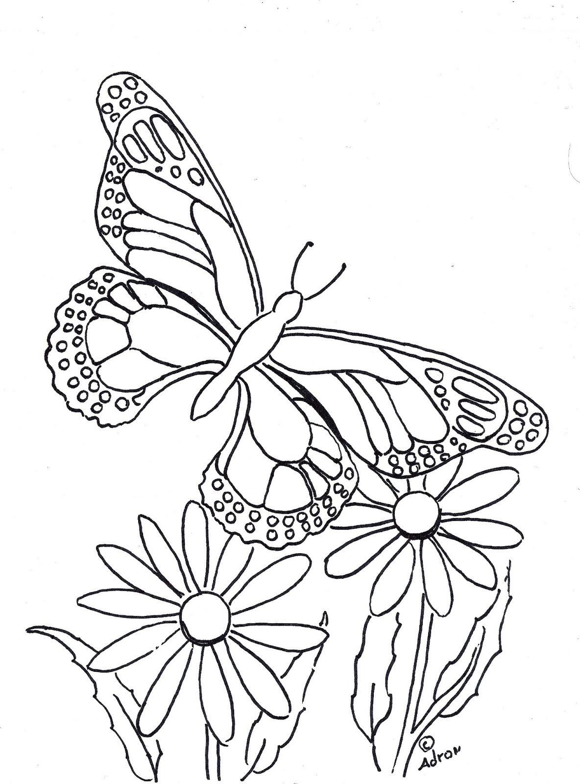 Coloring Pages For Kids By Mr. Adron: Butterfly Coloring