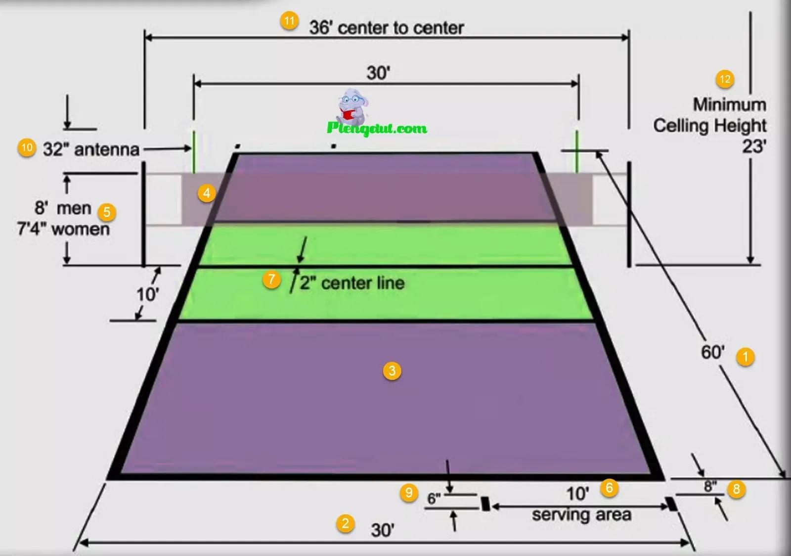 Sebutkan Ukuran Panjang Dan Lebar Lapangan Bola Voli