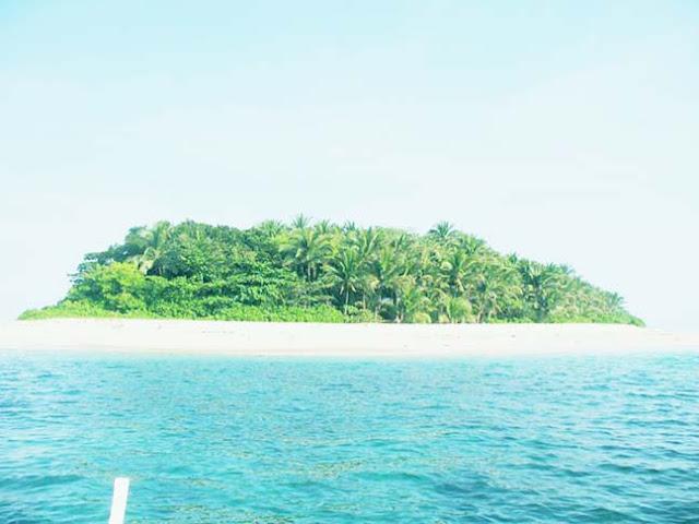 Mambulaoans WorldWide Buzz: Batch '82 members in sea ...
