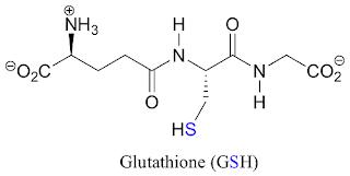 Glutathione là gì