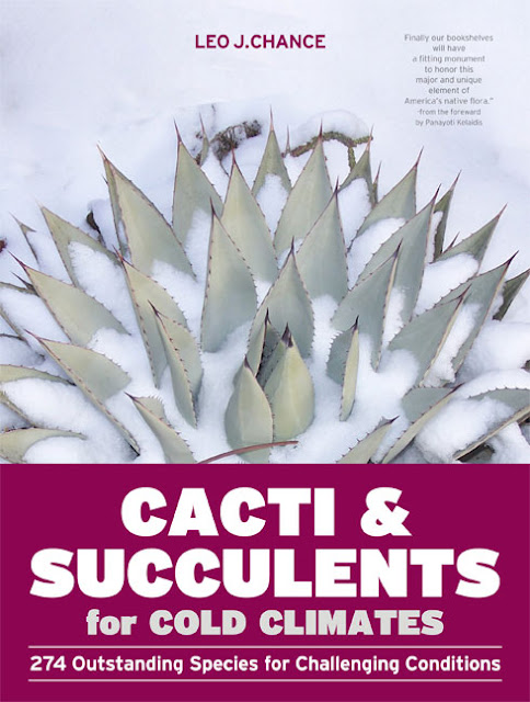 Cacti & Succulents for Cold Climates