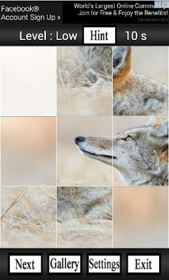 puzzle animal free
