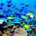 Sostienen Cuba y EE.UU. tercer encuentro sobre medioambiente