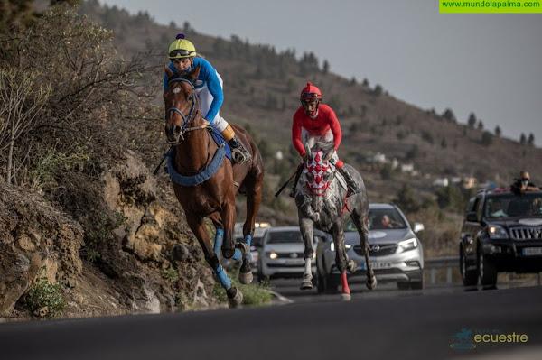 La Palma Ecuestre comenzará en el mes de julio con el objetivo de mantener los tres días de carreras