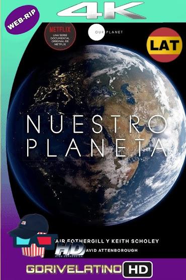 Nuestro Planeta (2019) Temporada 1 WEBRip 4K HDR Latino-Ingles MKV
