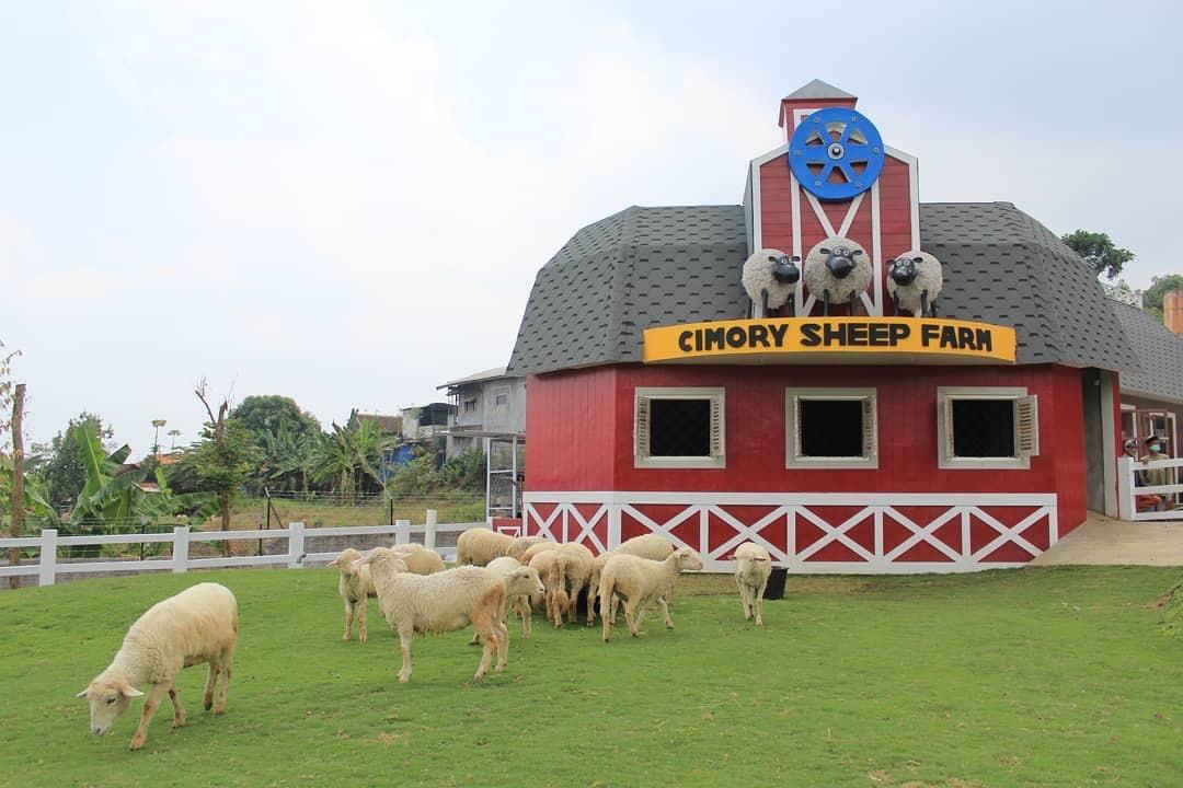 Wisata Cimory Pandaan