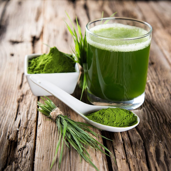 Chlorella und Spirulina für einen gesunden Lifestyle – Das Superfood aus dem Meer
