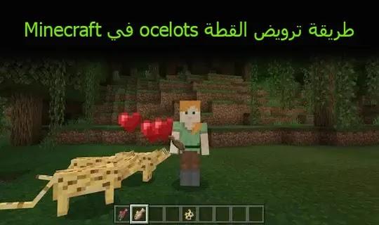 طريقة ترويض القطة ocelots في Minecraft