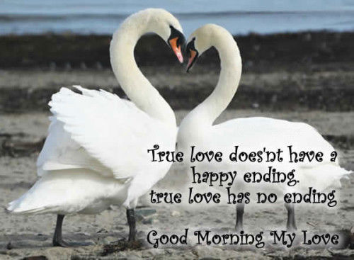 Good Morning My Love Black And White : Top images sexy good morning quotes for him really