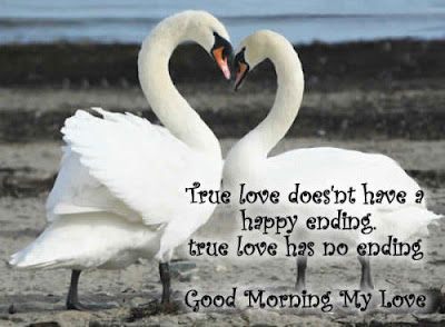 Sexy Good Morning Quotes: true love doesn't have a happy ending true love has DI ending good morning my love.