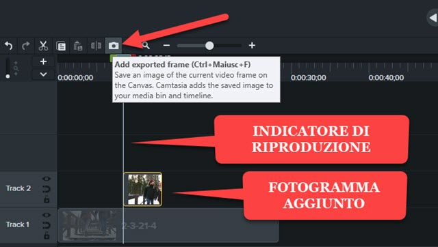 frizzare un video con camtasia
