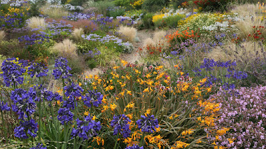 Wildside Garden, el lado salvaje del paisaje creado por Keith Wiley