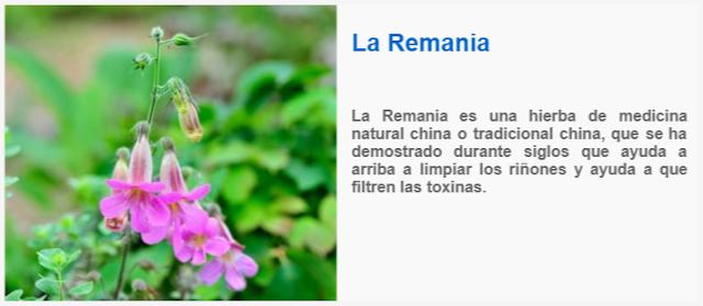 La Remania es una hierba de medicina natural china o tradicional china, que se ha demostrado durante siglos que ayuda a arriba a limpiar los riñones y ayuda a que filtren las toxinas