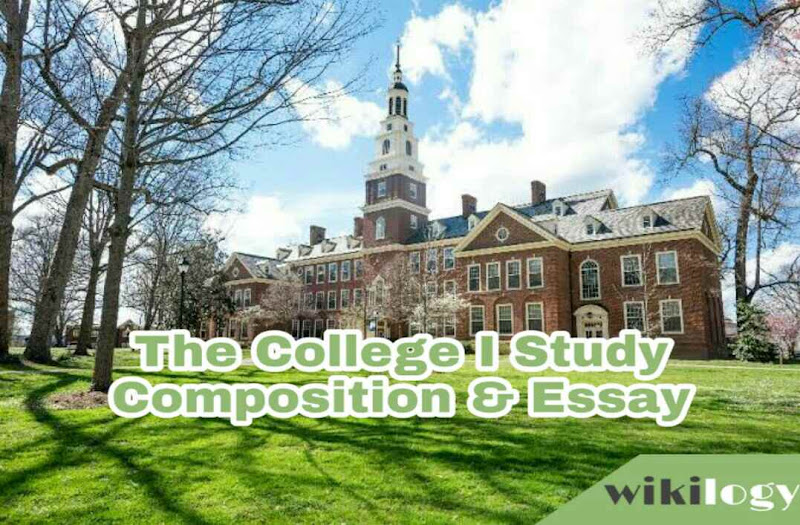 The College I Study Composition Essay