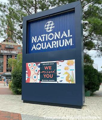 National Aquarium in Baltimore Maryland at Inner Harbor