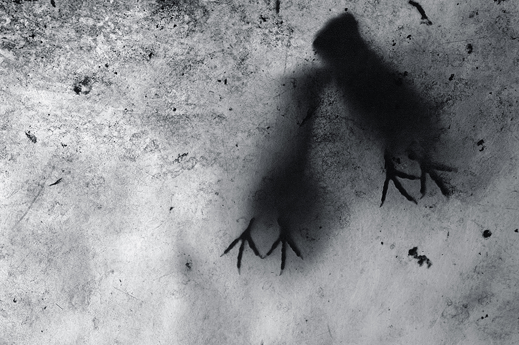 Got a nomination in the silhouette category at the 12th black and white spider awards you can see other nominees and winners here