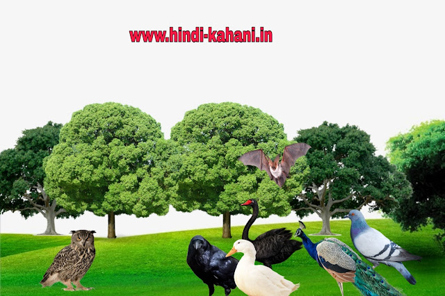 ullu aur kouva ki kahani, ullu aur kouva ki dushmani , owl and crow story in hindi