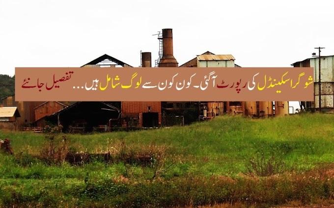 شوگر اسکینڈل کی رپورٹ آ گئی کون کون سے لوگ شامل ہیں|sugar-report-pakistan