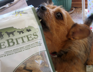Jada with PureBites dog treats