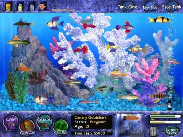 game Fish Tycoon ini adalah game ringan dan juga game untuk menghibur anak-anak atau balita