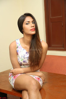 Nishi Ganda stunning cute in Flower Print short dress at Tick Tack Movie Press Meet March 2017 005.JPG