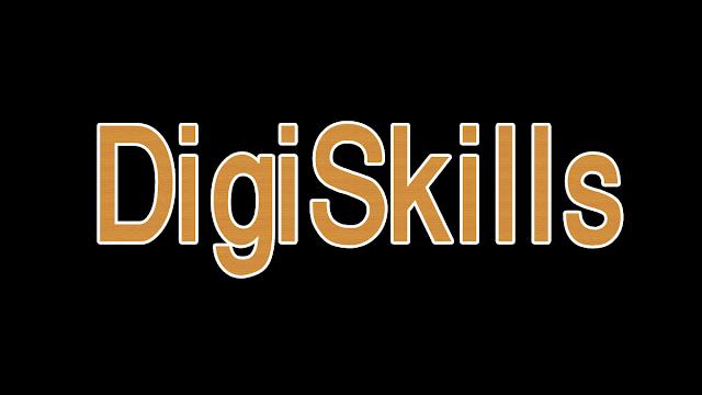 what is digiskills program