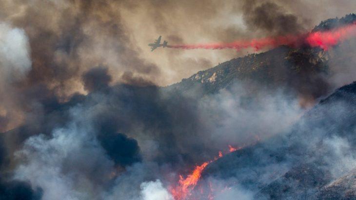 Hicieron fiesta para revelar el sexo de su bebé y provocaron un terrible incendio forestal