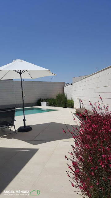 ideas para jardines, mejores imágenes jardines, jardines pequeños, fotos jardines, jardines casas particulares, jardines con piscina