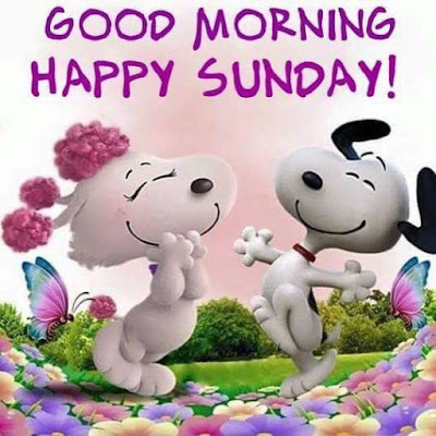 Happy good morning sunday Hd images and quotes downoad