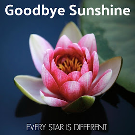 Goodbye Sunshine-A story about goodbyes related to mental health