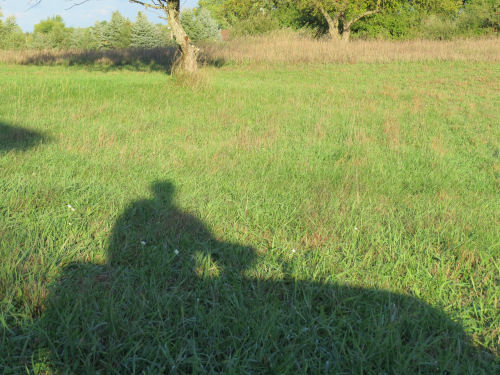 lawnmower shadow