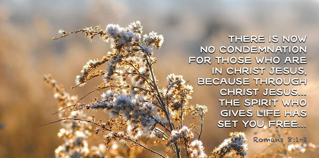 There is now no condemnation for those who are in Christ Jesus, because through Christ Jesus the law of the Spirit of life in Christ has set me free from the law of sin and death.