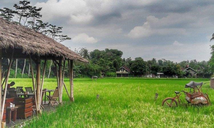 17 Tempat Makan di Magelang Paling Enak & Murah