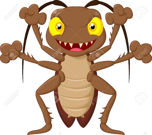 Columna de Gazcue: Las Cucarachas