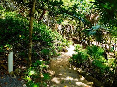 nature trails, nature, beauty, reopening, good energy, paya bay resort