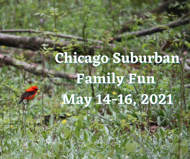 15 Family Fun Ideas in the Chicago Suburbs May 14-16, 2021