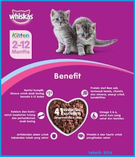 whiskas Makanan untuk Anak Kucing terbaik