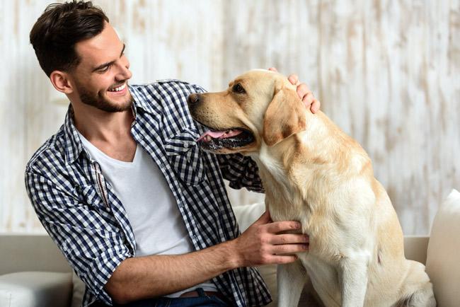 Jak usunąć psu kleszcza?