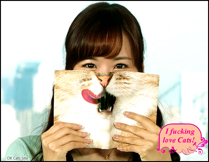 Photoshopped Cat picture • Girl fucking loves cats becauses she was a kitty in a previous life [ok-cats-site.com]