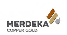 MDKA MDKA | Merdeka Copper Keduk Emas Lebih Banyak Tahun Ini