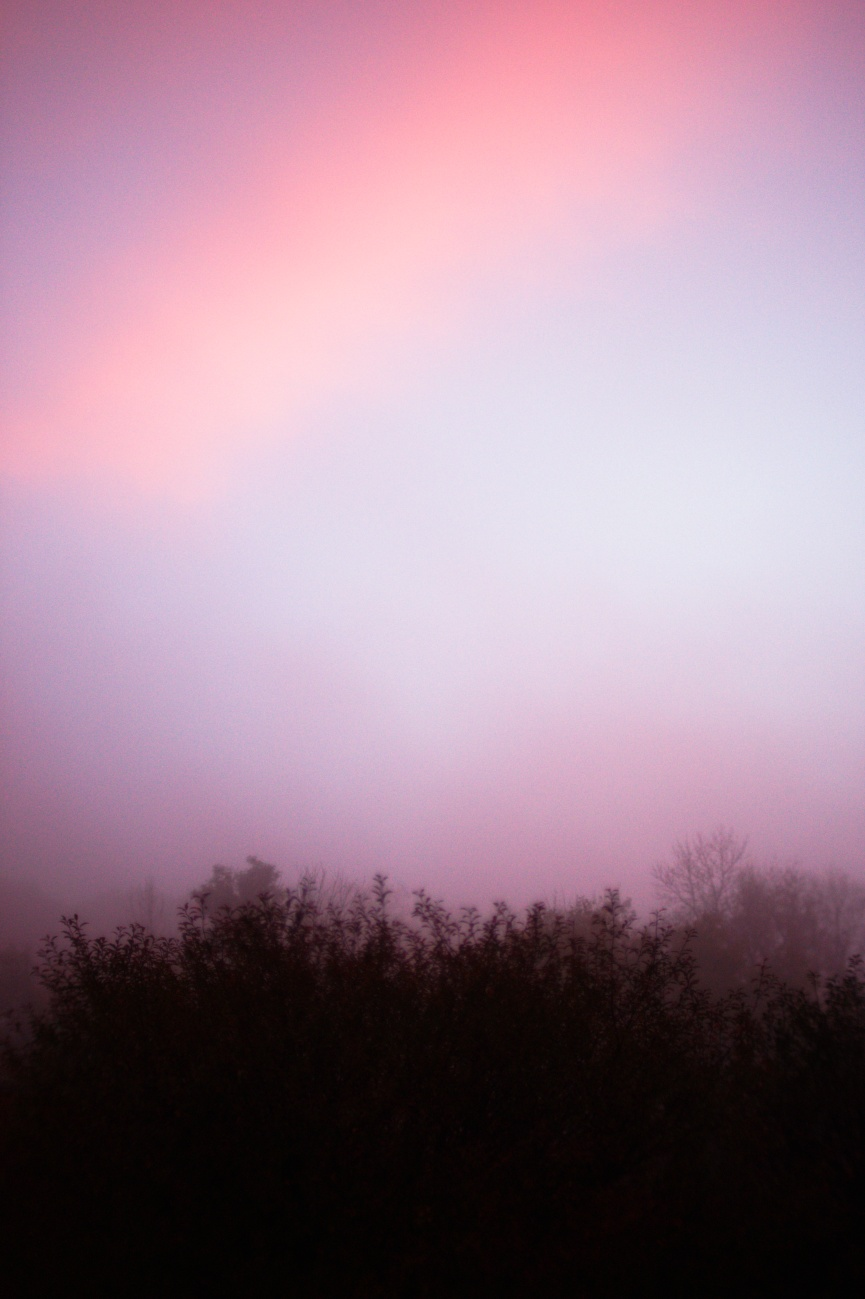 Zum Tagesabschluss — Bild des Tages #151 — Nebliges Morgenrot
